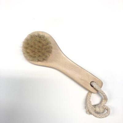 20250-croll-denecke-kaepidemega-hari-naonaha-koorimiseks-peeling-brush