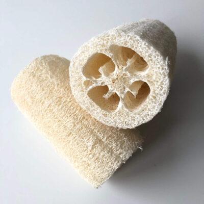 61000-croll-denecke-luffast-nuustik-loofah-sponge