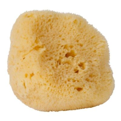 L100-croll-denecke-looduslik-siidikasn-natural-silk-sponge