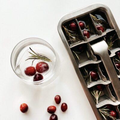0390-pulito-metallist-jaakuubikuvorm-stainless-steel-ice-cube-tray