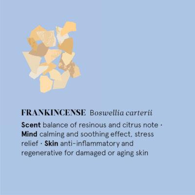 TN-E12-FRANK-the-nature-of-things-eeterlik-õli-viirukipuu-essential-oil-frankincense
