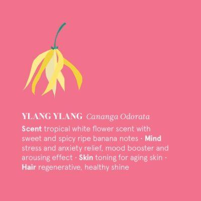 TN-E12-YLANG-the-nature-of-things-ylang-ylang-mahe-eeterlik-oli-essential-oil-organic-12-ml