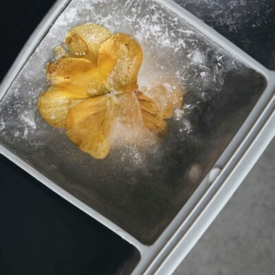 260690102-house-doctor-silikoonist-jaakuubikuvorm-ruudud-ice-cube-tray-3