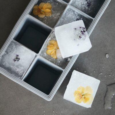 260690102 house doctor silikoonist jaakuubikuvorm ruudud ice cube tray2